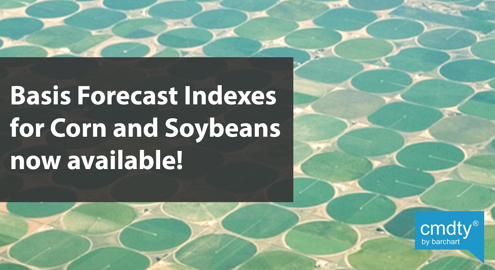 Grain Basis Forecasts