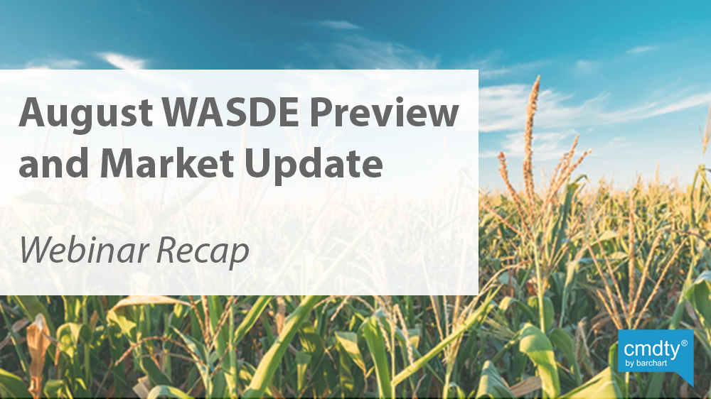 August WASDE Preview