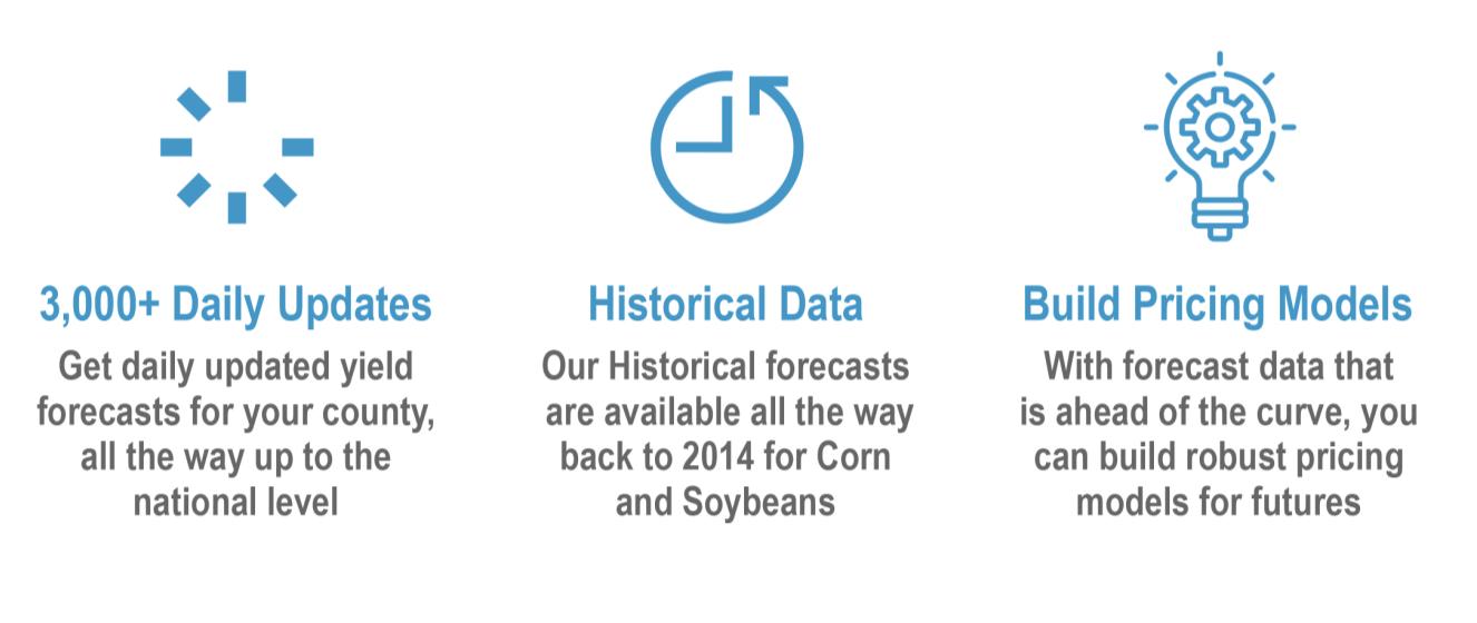Grain Yield Forecasts