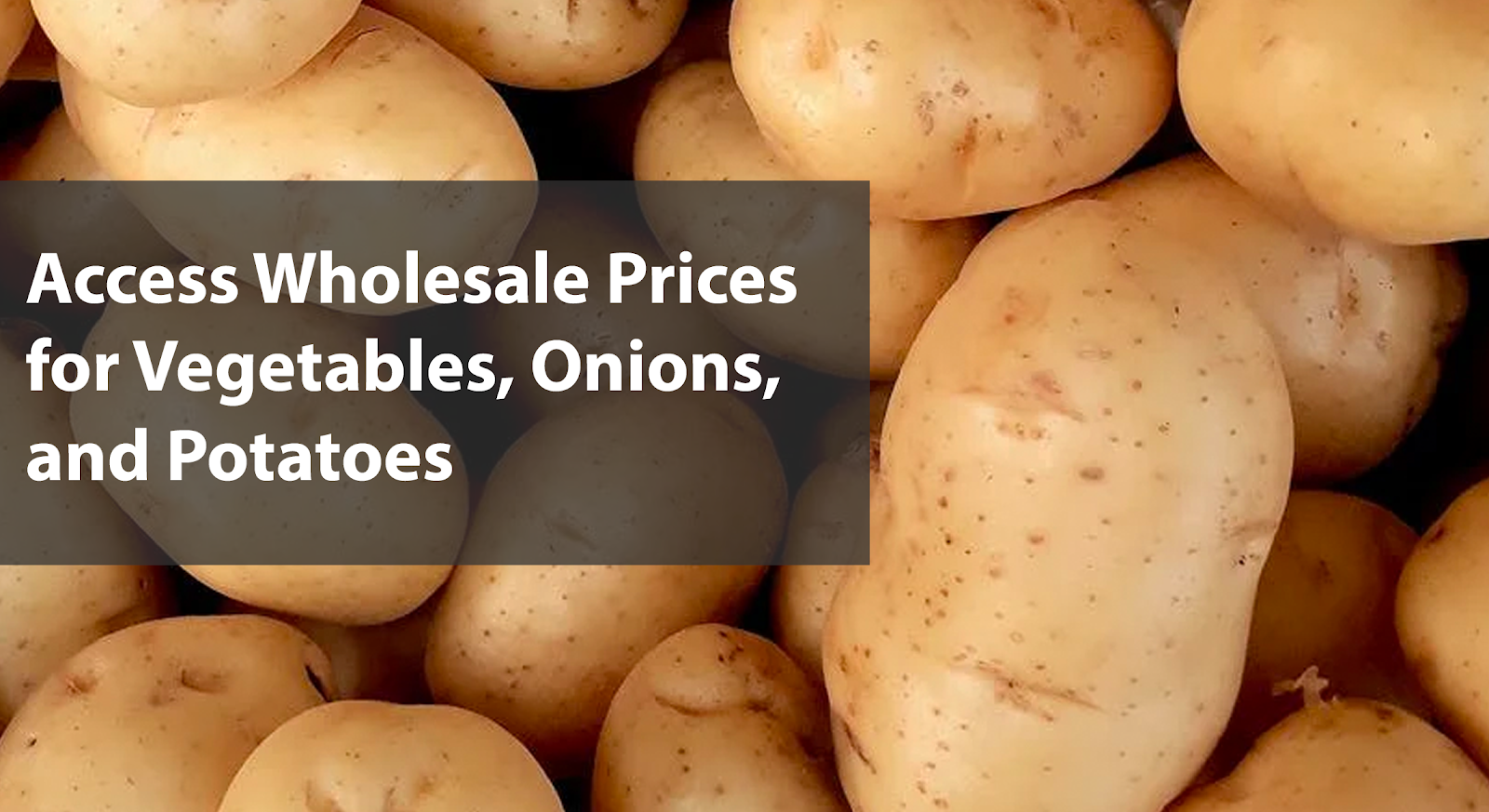 Wholesale Vegetable Prices