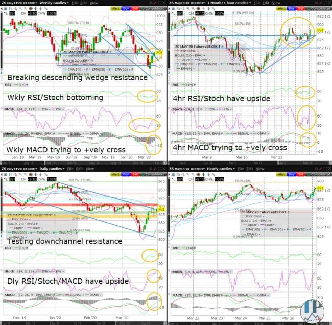 ZS (Soybean) Technical Analysis